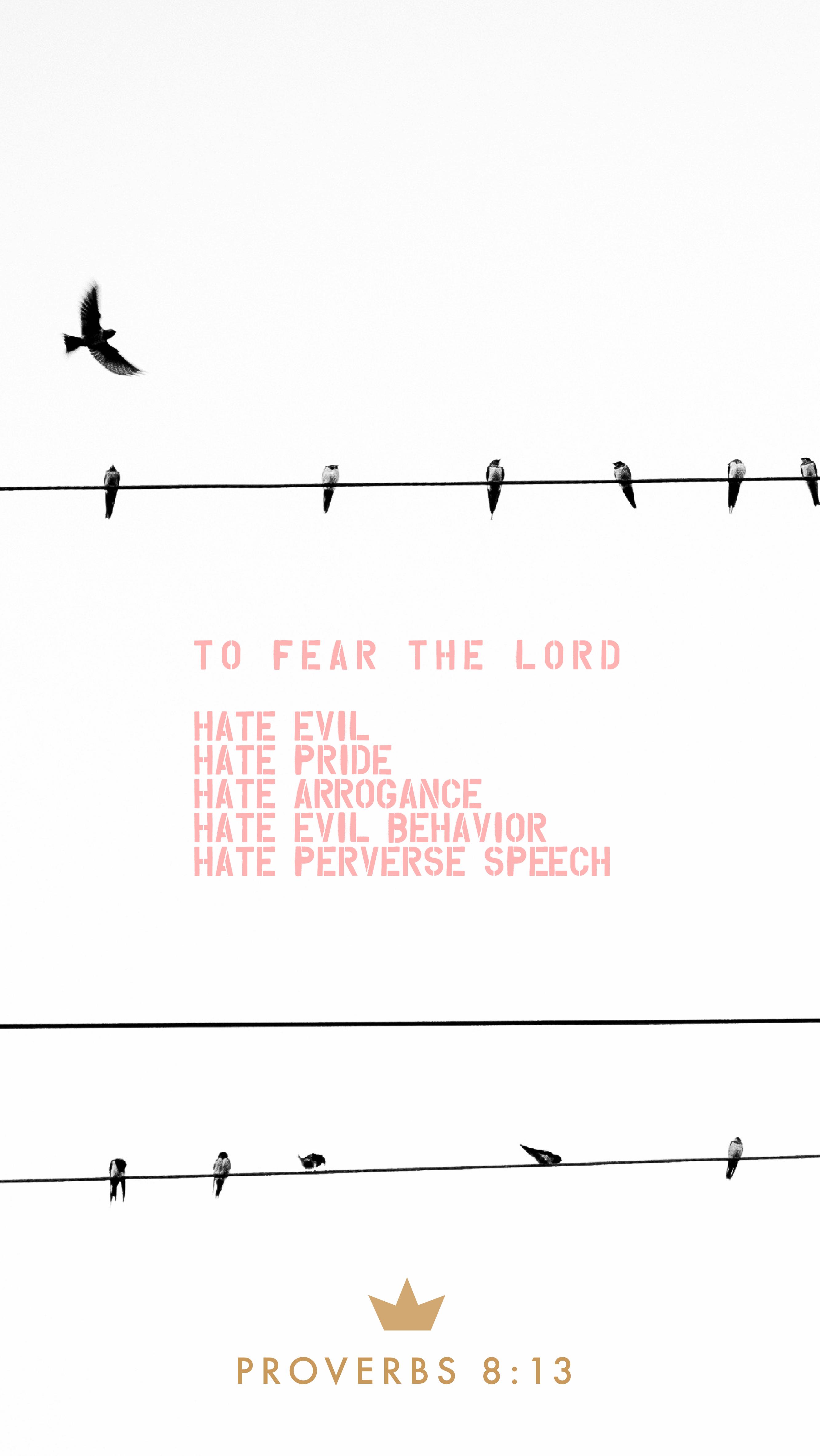 Proverbs – 8